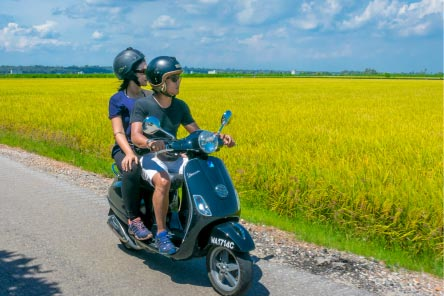 Paddy Field Daytrip